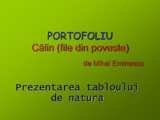 PORTOFOLIU Călin (file din poveste)