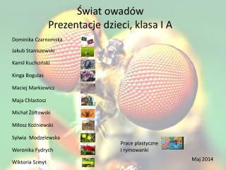 Świat owadów Prezentacje dzieci, klasa I A