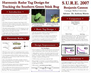 Harmonic Radar Tag Design for Tracking the Southern Green Stink Bug