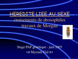 HEREDITE LIEE AU SEXE croisements de drosophiles travaux de Morgan