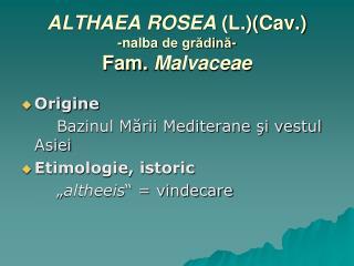 ALTHAEA ROSEA  (L.)(Cav.) - nalba de grădină- Fam.  Malvaceae
