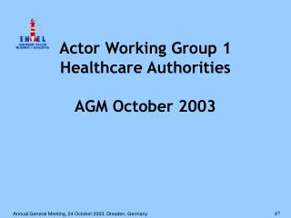 Actor Working Group 1 Healthcare Authorities AGM October 2003