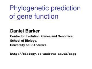 Phylogenetic prediction of gene function