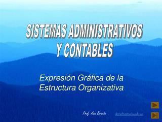 Expresi�n Gr�fica de la Estructura Organizativa
