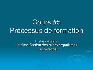 Cours #5  Processus de formation