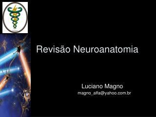 Revis o Neuroanatomia