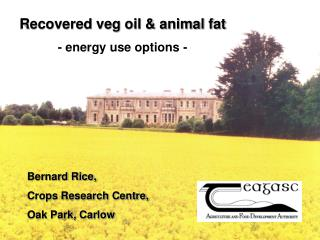 Recovered veg oil & animal fat - energy use options -