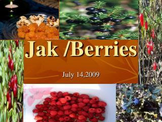 Jak /Berries