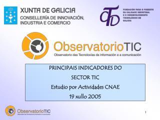 PRINCIPAIS INDICADORES DO  SECTOR TIC Estudio por Actividades CNAE 19 xullo 2005
