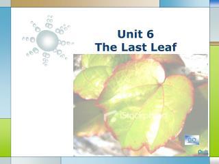 Unit 6 The Last Leaf