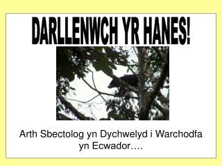 DARLLENWCH YR HANES!