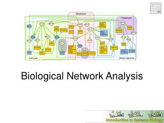Biological Network Analysis