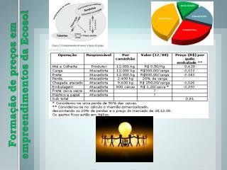 Formação de preços em empreendimentos da  Ecosol