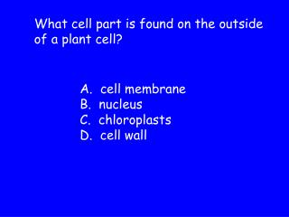 What cell part is found on the outside of a plant cell?