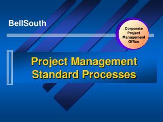 Project Management Standard Processes