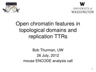 Open chromatin features in  topological domains and replication TTRs