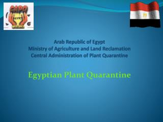 Egyptian Plant Quarantine