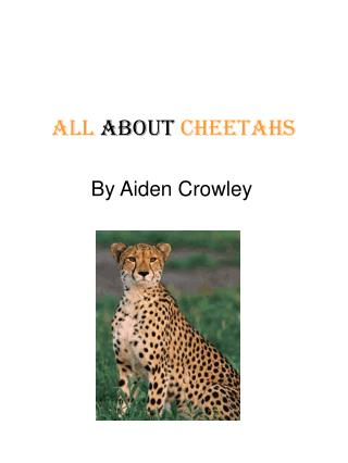 All  about  Cheetahs
