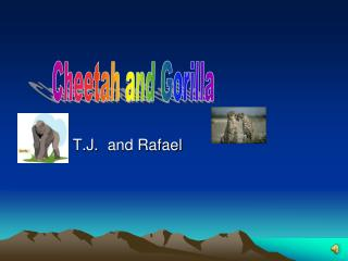 T.J.and Rafael