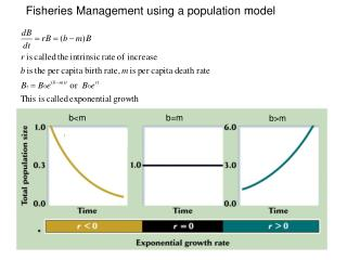 Fisheries Management using a population model