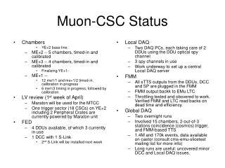 Muon-CSC Status