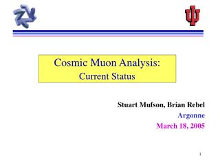 Cosmic Muon Analysis: Current Status