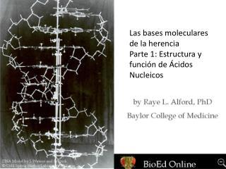 Las bases moleculares de la herencia Parte 1: Estructura y función de Ácidos Nucleicos