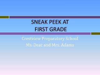 SNEAK PEEK AT  FIRST GRADE