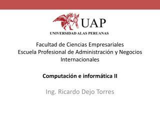 Ing. Ricardo Dejo Torres