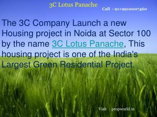 3C Lotus Panache