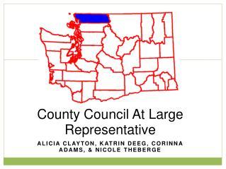 County Council At Large Representative