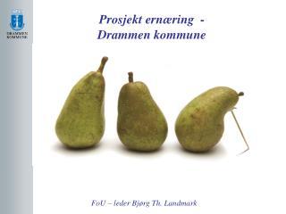 Prosjekt ernæring  -  Drammen kommune