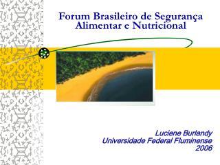 Luciene Burlandy Universidade Federal Fluminense 2006