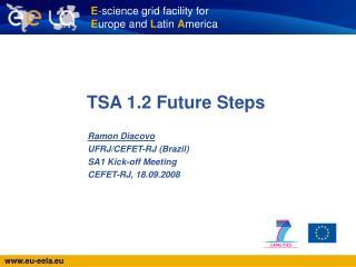 TSA 1.2 Future Steps