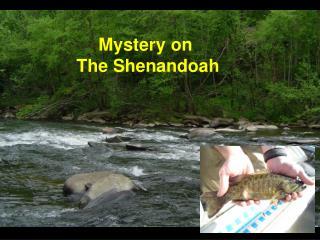Mystery on  The Shenandoah