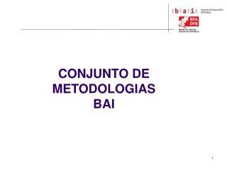 CONJUNTO DE METODOLOGIAS BAI