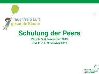 Schulung der Peers Zürich, 5./6. November 2013 u nd 11./12. November 2013