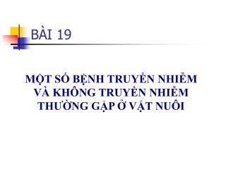 BÀI 19