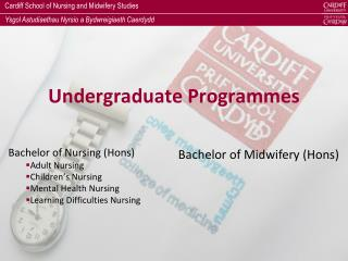 Undergraduate Programmes
