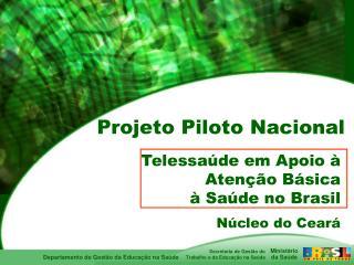 Telessa de em Apoio   Aten  o B sica   Sa de no Brasil
