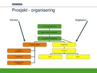 Prosjekt - organisering