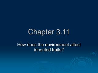 Chapter 3.11