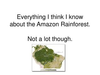 Everything I think I know about the Amazon Rainforest. Not a lot though.