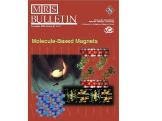 Organic Magnets