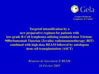 Réunion de lancement Z-BEAM 10 Février 2005