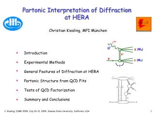 Partonic Interpretation of Diffraction at HERA