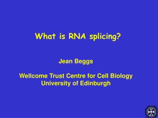 What is RNA splicing