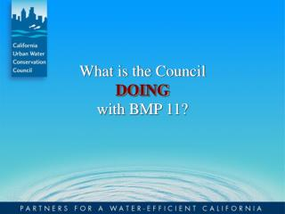 What is the Council  DOING  with BMP 11?