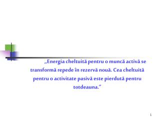 LICEUL  TEORETIC  ,,LUCIAN  BLAGA�  RAPORT  DE  ANALI Z?  semestrul  I , 2008 - 2009