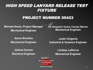 HIGH SPEED LANYARD RELEASE TEST FIXTURE